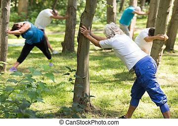 Seniors doing exercises in a park