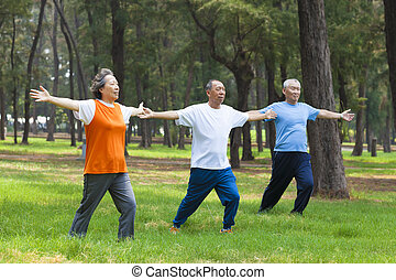seniors  doing gymnastics in the park