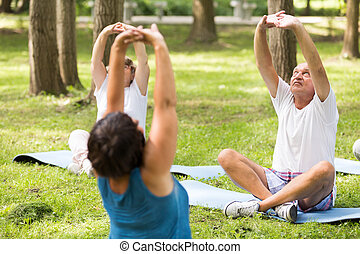 Seniors doing yoga in a forest