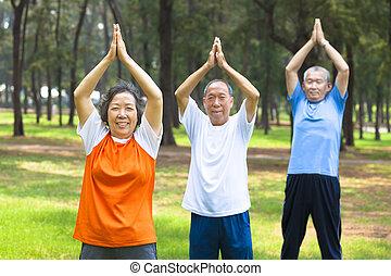 seniors, gör, gymnastik, i parken