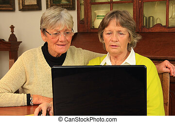 Seniors on the computer