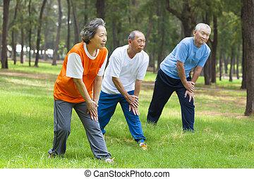 seniors, parco, su, jogging, warming, prima