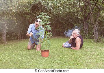 Seniors smoking marijuana and relaxing in the garden - Two...
