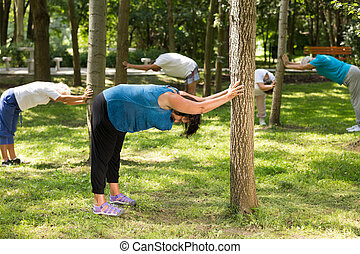 Seniors stretching in a park