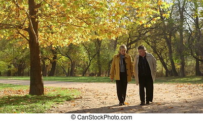 Seniors walking in a park
