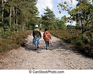 Seniors walking in forest.
