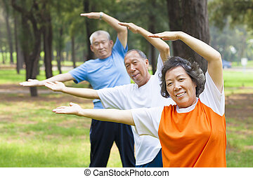 seniorzy, czyn, gimnastyka, w parku