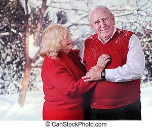 seniorzy, w, przedimek określony przed rzeczownikami, śnieg