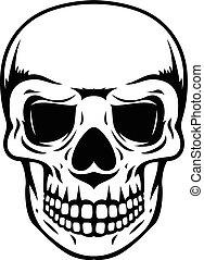 senken, totenschädel, kiefer, schwarz, menschliche , weißes