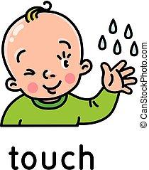 sensi, cinque, touch., icona, uno