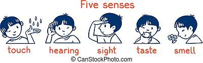 sensi, set., illustrazione, ragazzi, cinque, monocromatico, icona
