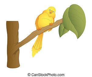 sentado, pájaro, en, rama, vector