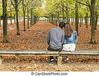 sentado, pareja, parque, joven, banco, otoño