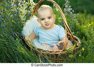 sentado, sliders, niño, cesta, pequeño, sonriente