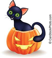 sentando, dia das bruxas, gato, pretas, caricatura, abóbora