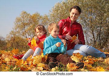 sentar, folhas, mãe, caído, crianças, maple