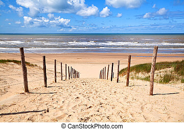sentier, à, plage sablonneuse, par, mer nord