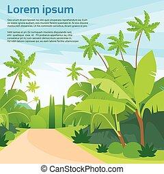 sentier, bleu, route, ciel, paysage, vert, jungle, forêt