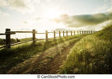 sentier, coucher soleil