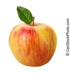 sentier, coupure, isolé, pomme, honeycrisp
