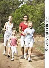 sentier, courant, parc, famille