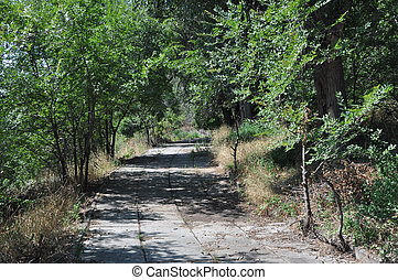 sentier, forêt, pavé