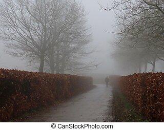 sentier, hiver, brouillard
