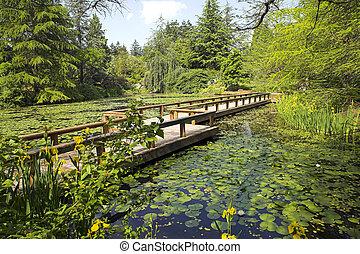 sentier, jardin botanique