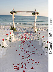 sentier, mariage, plage, pétales rose