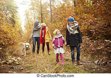 sentier, par, forêt, famille, promenade