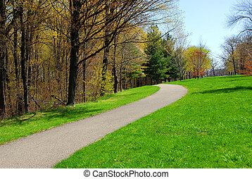 sentier, parc, printemps