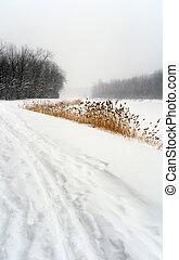 sentier, paysage hiver, neigeux
