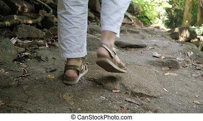 sentier, pierres, forêt, dame, long, randonnée, étapes, pieds, touriste
