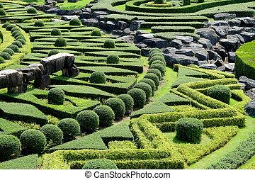 sentier, topiary jardin, paysage