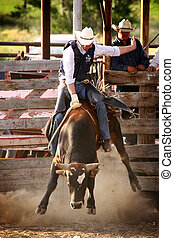 sentiero per cavalcate, rodeo, cowboy, toro