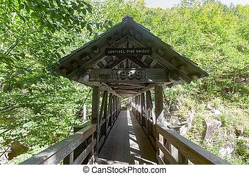 Sentinel Pine Bridge - Sentinel Pine Covered Bridge in...