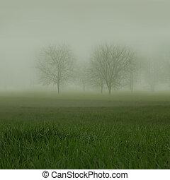 senza foglie, albero, barely, visto, su, nebbioso, erboso, paesaggio