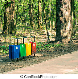 separately, reciclar, bosque, cajón