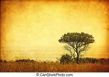 sepia, grunge, árbol