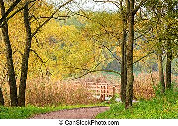 September - autumn landscape of an empty park in the beginning of autumn