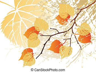 September leaves background - Autumn september grunge leaves...