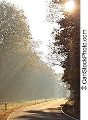 september morning - sunlight on a foggy autumn morning