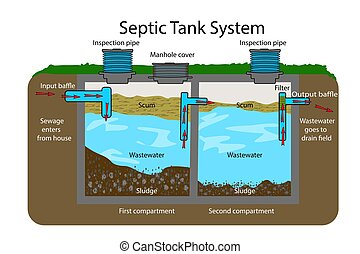 Infographic with text descriptions of a Septic Tank. Domestic wastewater. Flat vector EPS