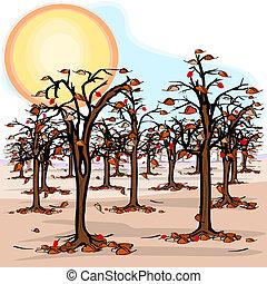 sequía, huerto