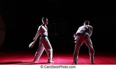 sequence of taekwondo kicks - a sequence of different...