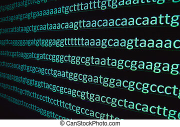 Sequencing of the genome. The sequence of nucleotide bases...