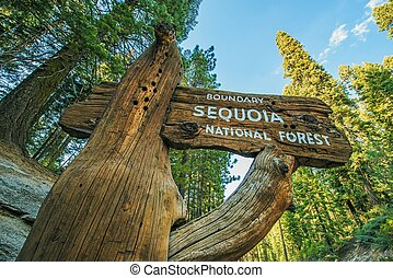 Sequoia National Forest Wooden Sign on the Sequoia National...