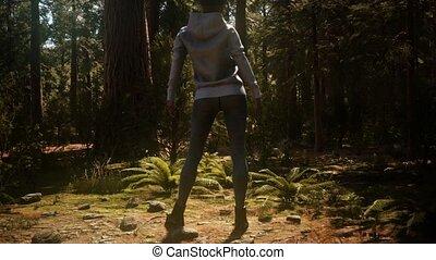 sequoia, yosimite, park, vrouw, nationale