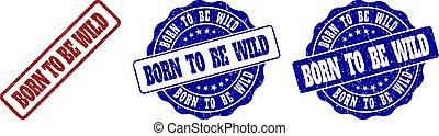 ser, grunge, selo, selos, nascido, selvagem
