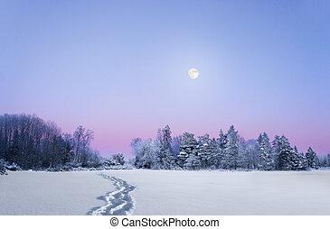 sera, pieno, paesaggio inverno, luna
